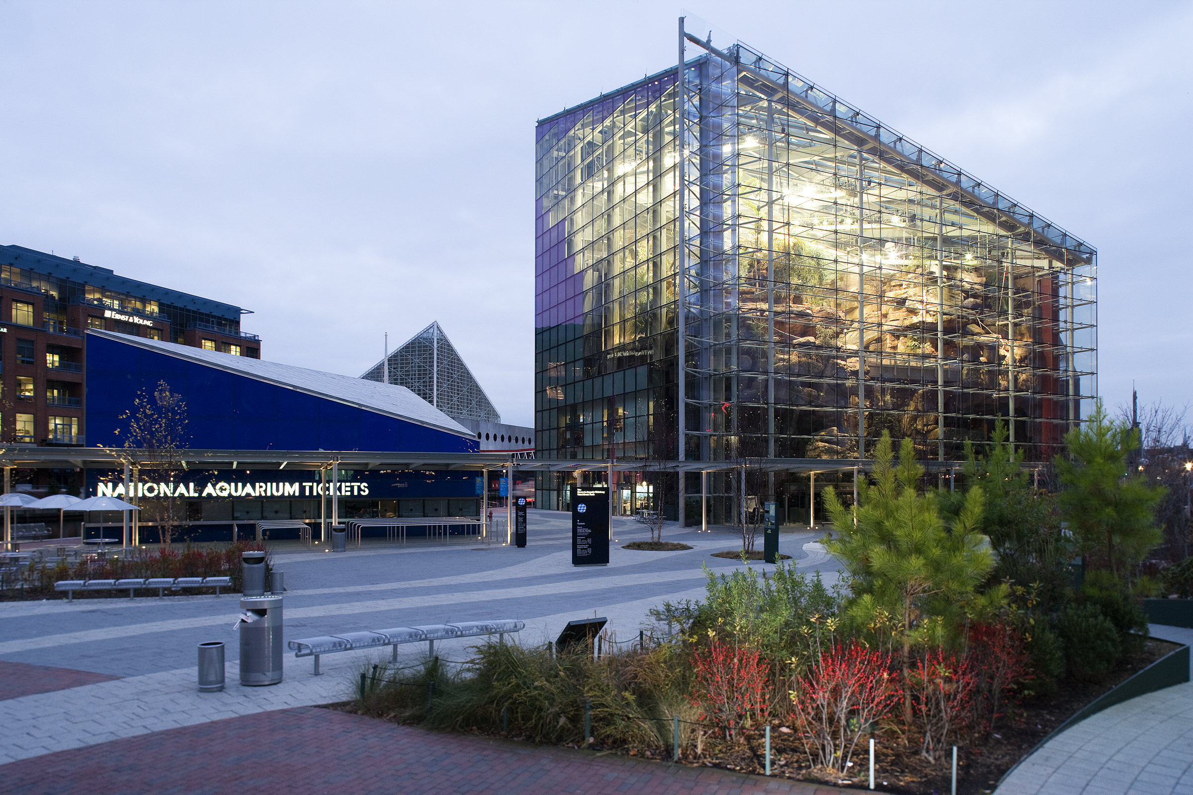 Experience The National Aquarium In Baltimore The Wayside Inn