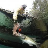 Liberty Reservoir fishing